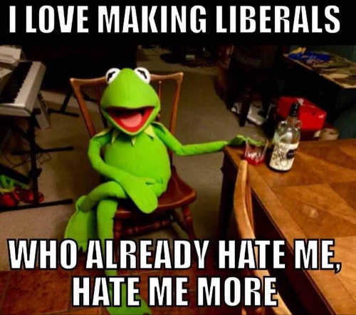 i-love-making-liberals-already-hate-me-more-kermit