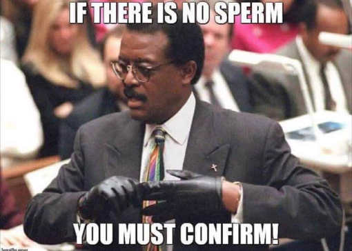 if-theres-no-sperm-you-must-confirm-judge-kavanaugh-johnny-cochrane
