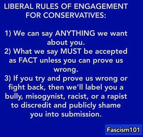 liberal-fascism-rules-of-engagement-for-conservatives-we-can-say-anything-about-you-label-if-you-fight-back