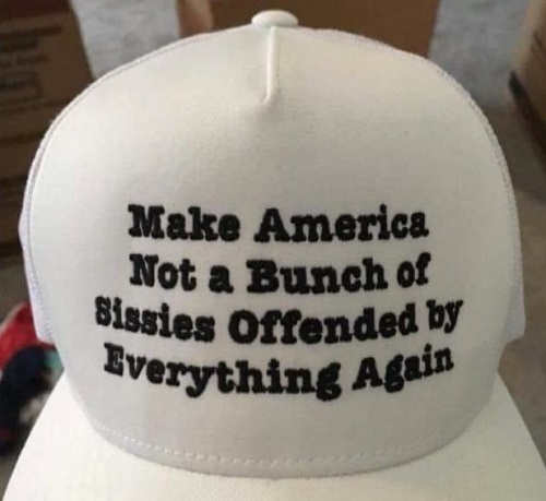 make-america-not-bunch-of-pussies-offended-by-everything-hat