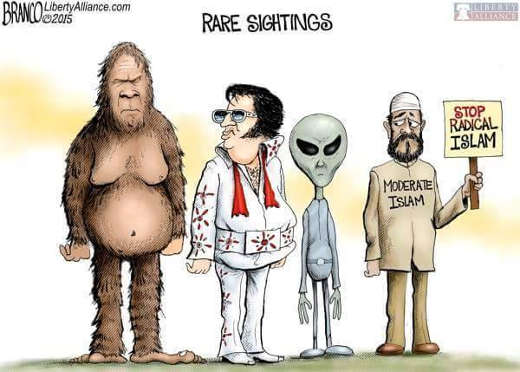 rare-sightings-bigfoot-elvis-alien-moderate-muslim