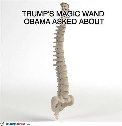 trumps-magic-wand-obama-asked-about-a-spine-backbone