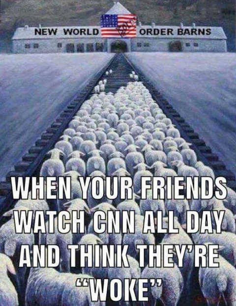 when-your-friends-watch-cnn-msnbc-all-day-new-world-order-barn-sheep