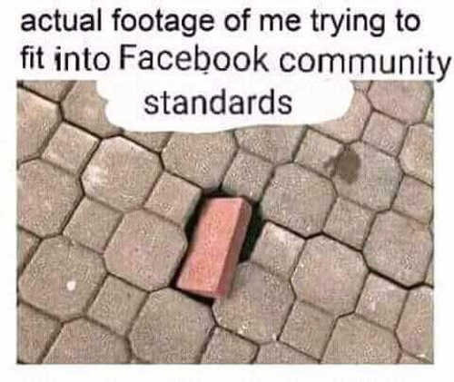 actual-footage-of-me-trying-to-fit-into-facebook-community-standards