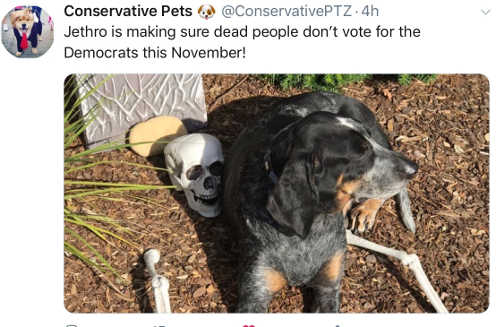 conservative-votes-jethro-makes-sure-democrats-dont-get-vote-of-dead