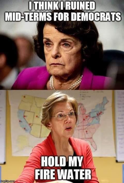 diane-feinstein-i-think-i-ruined-midterms-for-democrats-elizabeth-warren-hold-my-fie-water