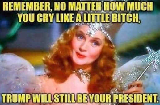 glenda-good-witch-remember-no-matter-how-much-cry-like-little-bitch-trump-still-your-president