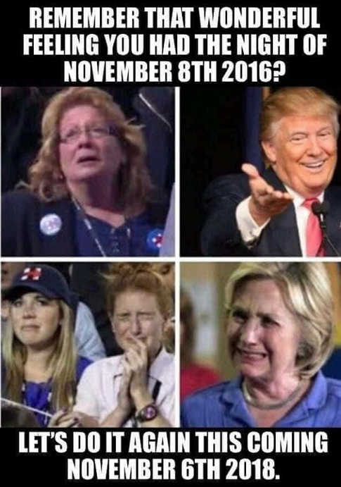 remember-the-feeling-from-november-9th-2016-lets-do-it-again-2018-trump-hillary