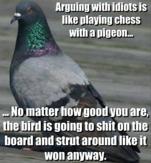 arguing-with-idiots-playing-chess-with-pigeon-no-matter-bird-will-shit-on-board-and-strut-like-it-won