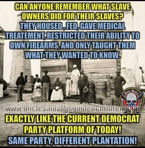 can-you-remember-slaves-fed-clothed-medicine-couldnt-own-guns-learn-what-they-want-like-democrats-nowadays