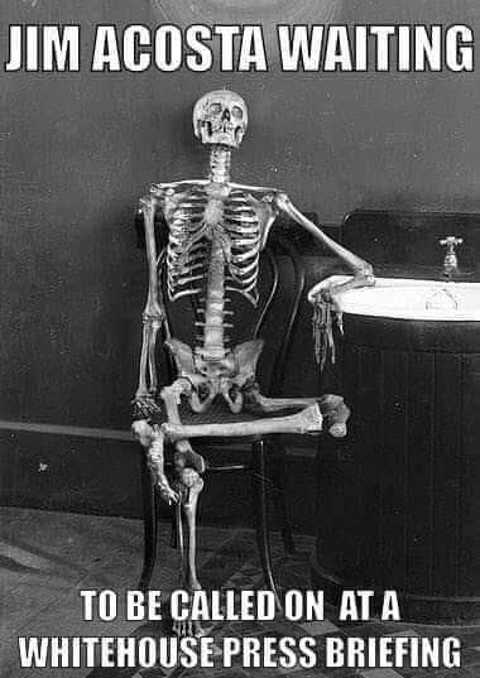 jim-acosta-waiting-to-be-called-on-white-house-skeleton