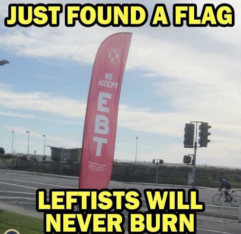 just-found-flag-leftists-will-never-burn-ebt