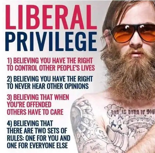 liberal-privilege-believing-control-other-peoples-lives-rules-dont-apply-to-you-offended-never-hear-other-opinions