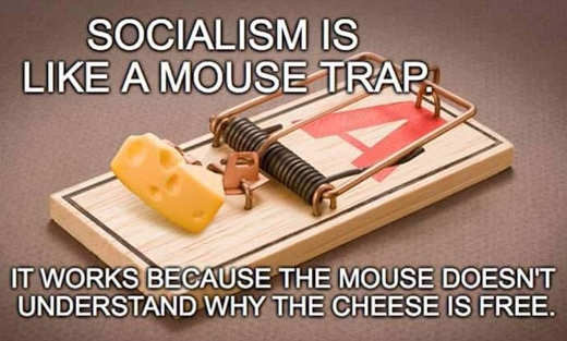 socialism-like-mouse-trap-works-because-mouse-doesnt-understand-why-cheese-is-free