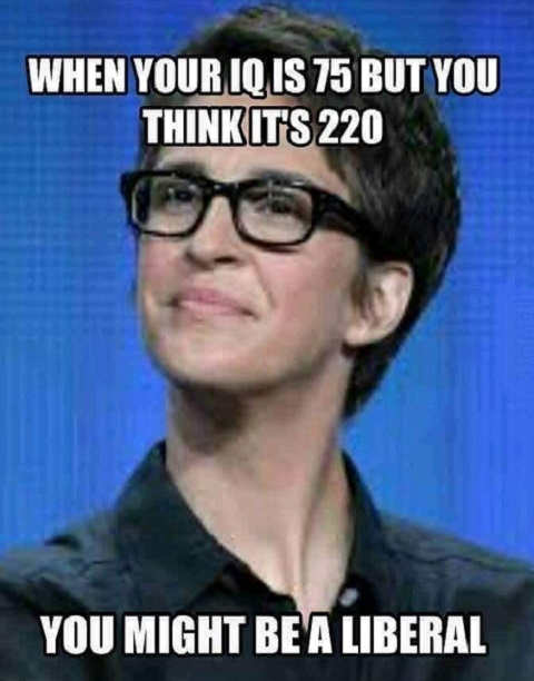 if your iq is 75 but you think its 220 you must be liberal rachel maddow