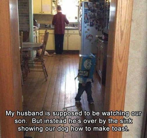 my husband supposed to be watching kids teaching dog to make toast