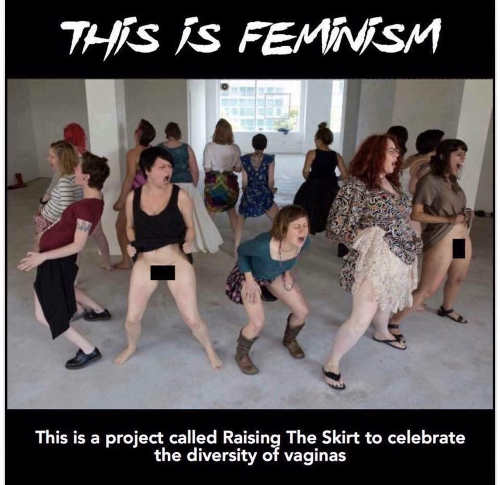 this is feminism project called raising the skirt to celebrate diversity of vaginas
