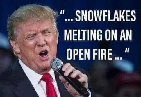 trump singing snowflakes melting on an open fire
