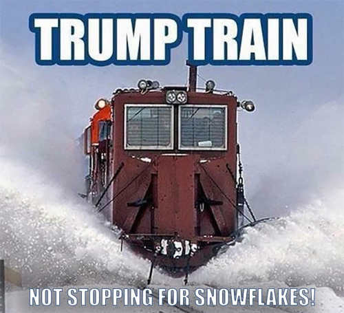 trump train no stopping for liberal snowlakes
