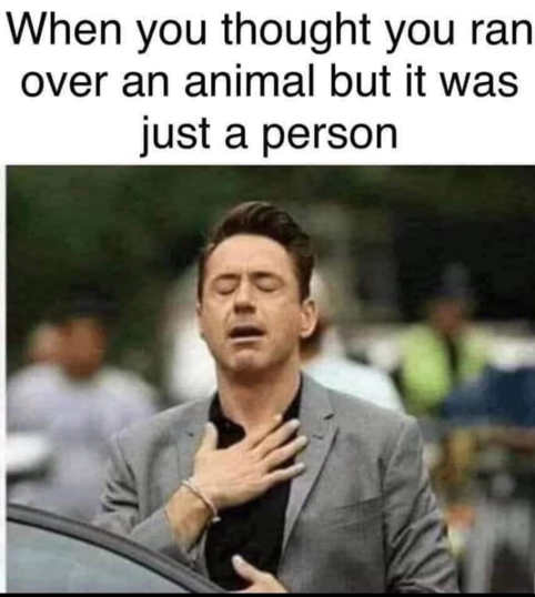when you thought you ran over animal just a person