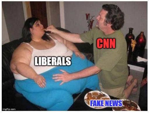 cnn feeding fake news to fat woman