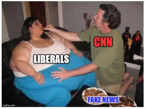 cnn feeding fake news to fat woman