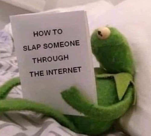 kermit-how-to-slap-someone-through-the-internet