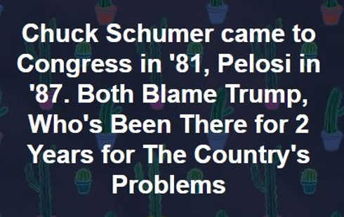 pelosi schumer in office for decades trump for 2 years blame him for all countries problems