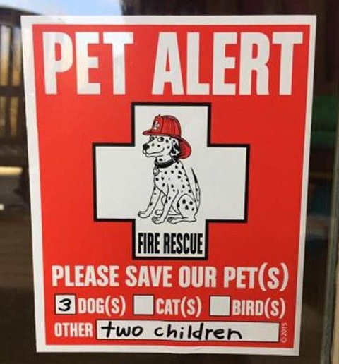 pet alert please save our 3 dogs other two children
