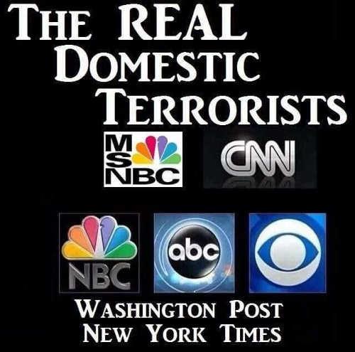 real domestic terrorists cnn msnbc cbs abc