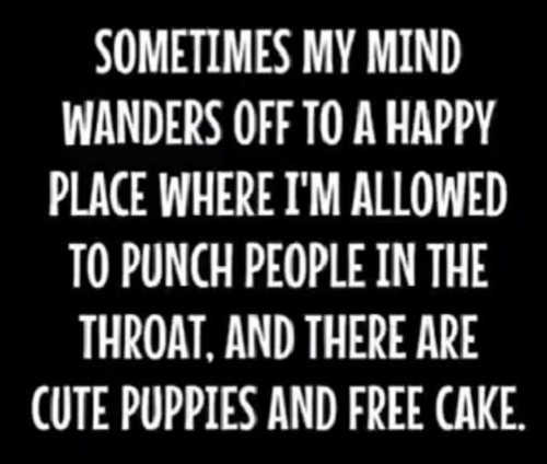 sometimes my mind wanders to happy place where im allowed to punch people in throad puppies free cake
