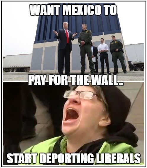 trump want mexico to pay for wall start deporting liberals