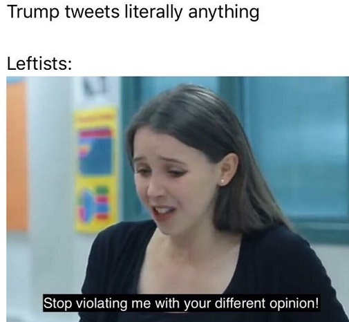 when trump tweets anything liberals stop violating me with your different opinion