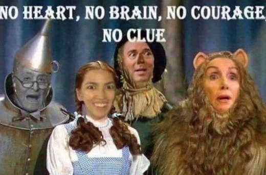 no heart brain clue courage schiff ocasio cortez pelosi schumer