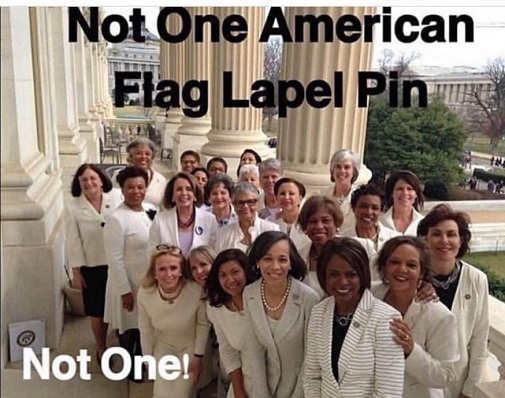 not one american flag lapel pin on white sotu ladies