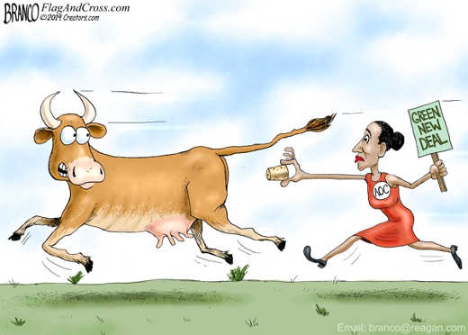 ocasio cortez chasing cow green new deal
