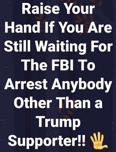 raise your hand still waiting for fbi to arrest anybody other than trump supporter