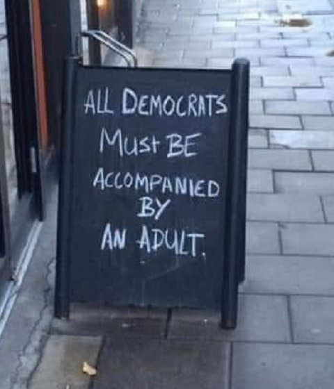 all democrats must be accompanied by an adult