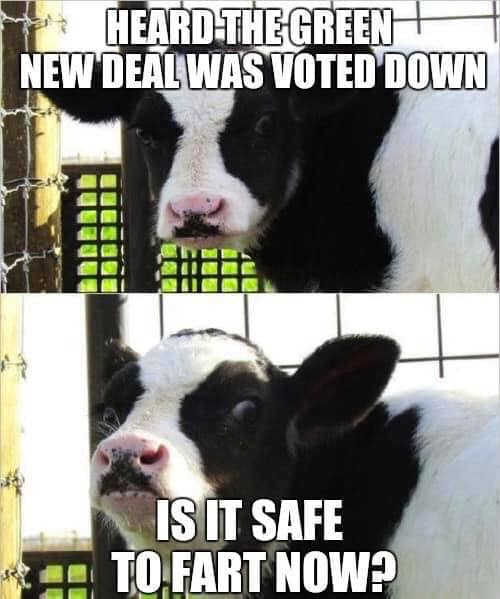 cow heard green new deal voted down is it safe to fart now