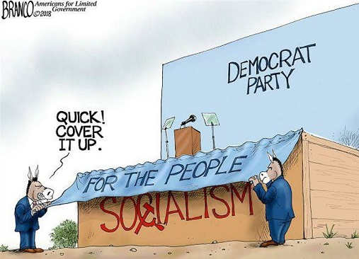 democrat party quick cover up socialism for the people sign