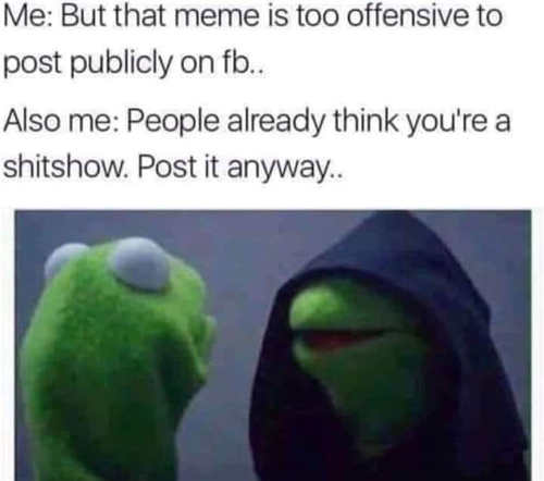 evil kermit meme too offensive to post people think youre a shitshow anyway