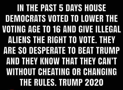 past 5 days house democrats voted lower voting age let illegals vote beat trump by cheating