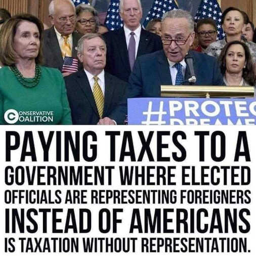 paying taxes to government represents foreigners taxation without representation
