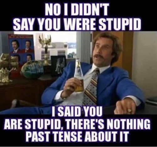 i didnt say you were stupid there was nothing past tense about it