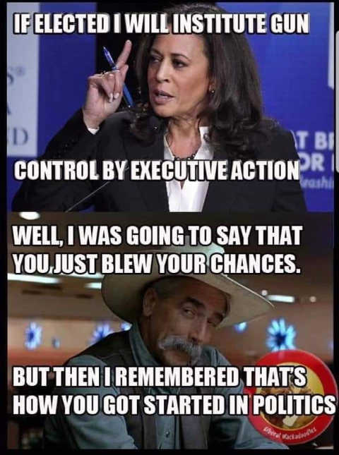 kamala harris gun confiscation say just blew chances but then remember how you got started in politics