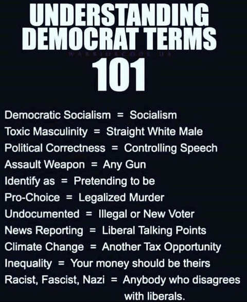 understanding democrat terms 101 socialism climate change toxic masculinity
