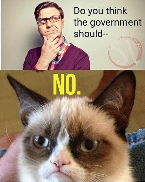 do you think government should grumpy cat no