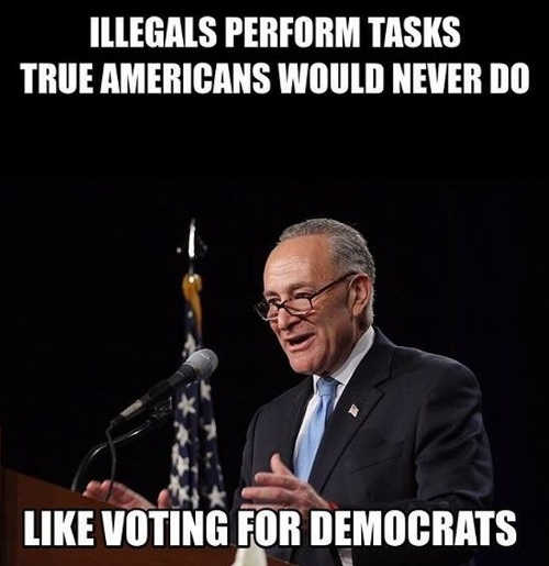 schumer illegals perform tasks true americans would never do voting for democrats