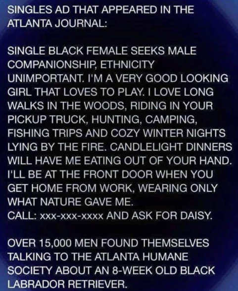 singles ad humane society black laborador