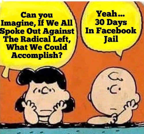 charlie brown can you imagine if we spoke out against radical left yeah 30 days facebook jail
